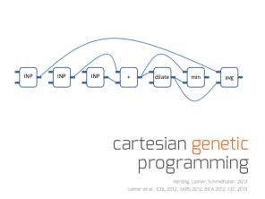 Cartesian Genetic Picture